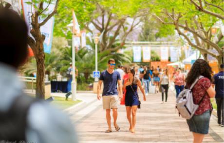 משרד האוצר בדק: מי מרוויח יותר בוגרי אוניברסיטאות או מכללות – התוצאות מפתיעות