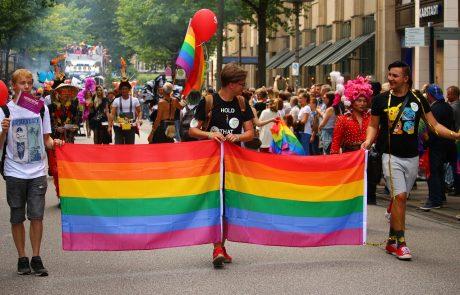 מחקר חדש: גם בקרב הקהילה הגאה יש מבקרים להורות חד מינית