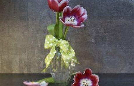 דימויי פרחים בתרבות ובאמנות
