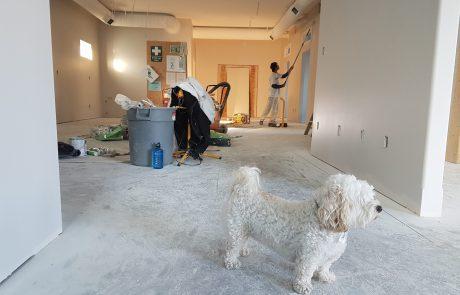 זהו, החלטתם על מספר עבודות שיפוצים על מנת לחדש את הבית ולשנות את האווירה
